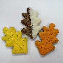 Seasonal Cookies- Fall