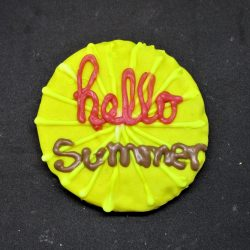 Seasonal Cookies- Spring/Summer